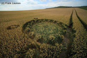 crappy crop circle