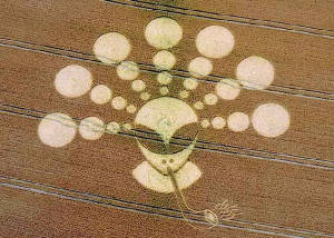 Crop circle of an alien